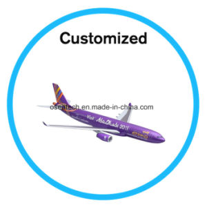 Custom Large Scale Model Aircraft pictures & photos