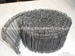 Galvanized Double Loop Wire Ties pictures & photos