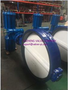 Ductile Iron Wafer Butterfly Valve Dn1000 pictures & photos