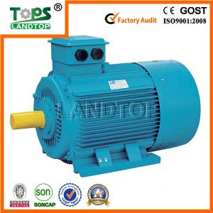 Y2 Three Phase Induction Motor 275kw (Y2 series) pictures & photos