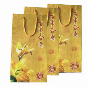 Color Pinting Paper Bag for Shopping and Promotion pictures & photos