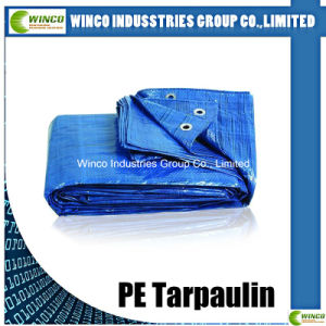 PE Tarpaulin with Reinforced Eyelets Hot Selling Waterproof PE Tarpaulin Sheet Canvas Sheet Covers pictures & photos