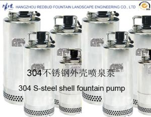304 Stainless Steel Pump pictures & photos