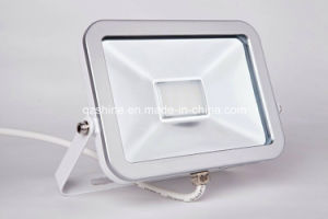 iPad Floodlight SMD 2835 10W Economic pictures & photos