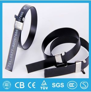 304 Epoxy Coated Stainless Steel Cable Tie-Wing Lock Type pictures & photos
