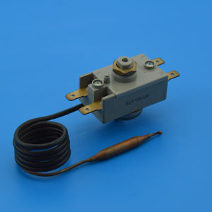 Capillary Type Cut off Thermostat (WY series) pictures & photos