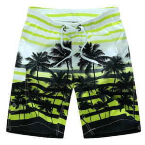 Swim Mens New Design Surf Shorts 2017 Beach Board Shorts pictures & photos