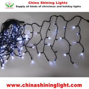 Black Wire Ce RoHS UL SAA Standard LED String Lights pictures & photos