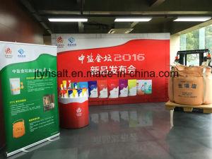 Kintan Samll Bag Edible Salt-for China pictures & photos