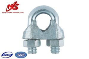 DIN 741 Galvanized Steel Wire Clips Fastener pictures & photos