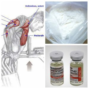 FDA High Quality Muscle Building Steroid Powder Testosterone Decanoate pictures & photos