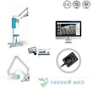 Medical Wireless USB Digital Dental X-ray Sensor pictures & photos
