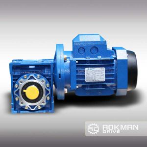 Best Selling RV Series Worm Gearbox with Motor pictures & photos