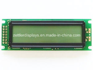 12X2 Character LCD Display Module,: (ACM1202A) Series pictures & photos