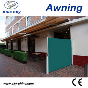 Aluminum Frame Retractable Polyester Screen Awning (B700) pictures & photos