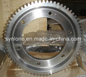 Gear Housing and Worm Wheel with Different Sizes in China pictures & photos