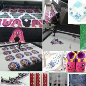 CCD Camera Garment Shoes Logo or Labels Laser Cutting Machine pictures & photos