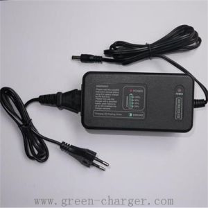 2.8A Photographic Equipment Charger pictures & photos