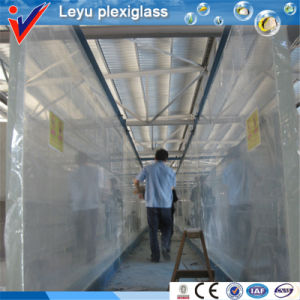 Large Custom Transparent Acrylic Aquarium