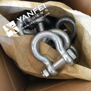 Us Type G2130 Bow Shackle with Screw Pin pictures & photos