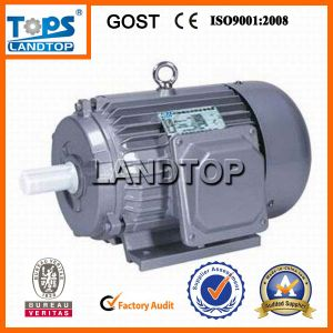 Y Series 3 Phase AC Induction Electric Motor pictures & photos