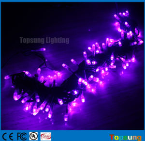 110/220V 10m Tree Decoration LED Fairy String Light Outdoor