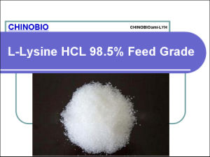 Feed Additive/Amino Acids/L-Lysine HCl with Good Quality and Low Price