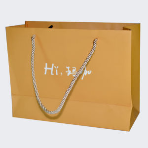 Custom Logo Printed Paper Shopping Gift Bags (OEM-PB022) pictures & photos