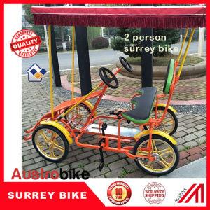 2 Seat 2 Person Bike Green Surrey Bike pictures & photos