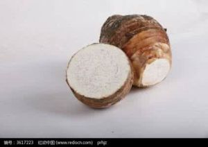 Taro for Exporting From China pictures & photos