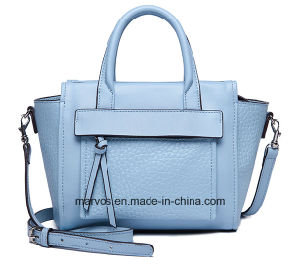 Wholesale Fashion Lady Leather /PU Handbag with Hight Quality (066) pictures & photos