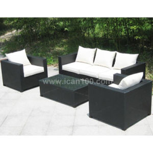 Garden Leisure Rattan Sofa Furniture (WS-06020) pictures & photos