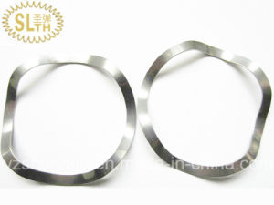 Stainless Steel Wave Spring Washer pictures & photos