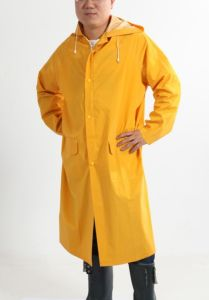 2015 Fashion PVC Raincoat (DPA030) pictures & photos
