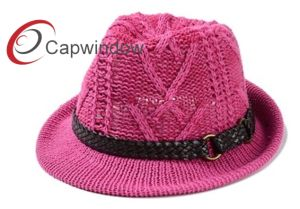 The Fashion Top Hat of Knitted Wool pictures & photos