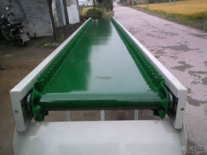 PVC Food Conveyor Belt pictures & photos
