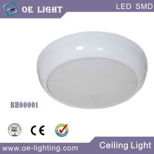 15W LED Bulkhead Light LED Ceiling Light