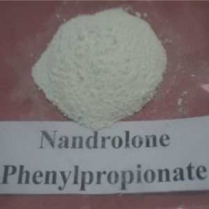 Nandrolone Phenylpropionate Powder Steroid Hormone Nandrolone Phenylpropionate pictures & photos