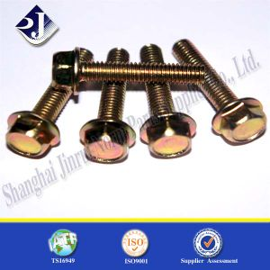 Hex Flange Bolt with Zinc pictures & photos