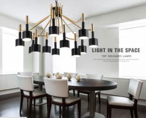 12-Lights Modern Metal Decorative Hanging Pendant Chandelier Lamp Lighting for Living Room pictures & photos