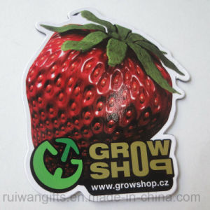 Strawberry Shape Souvenir Firdge Magnet pictures & photos