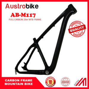 "29""Mountain Bike Carbon Fiber Frame"