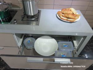 Import New Model Plastic Kitchen Cabinet (ZHUV) pictures & photos