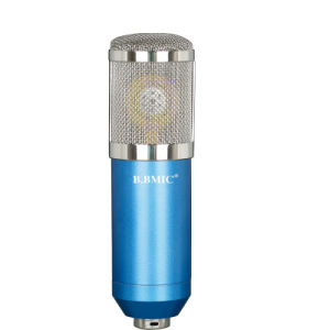Capacitor Microphone Computer Microphone Network Karaoke Microphone Shout Wheat pictures & photos