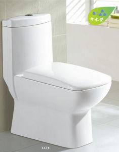 One Piece Toilet Closet (CE-T217) pictures & photos