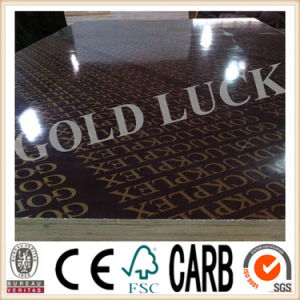 9mm -18mm Film Faced Plywood with Logo Gold Luck pictures & photos