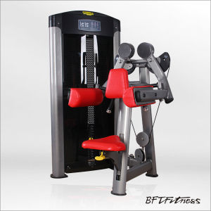 Professional Fitness Equipment (Lateral Raise) pictures & photos