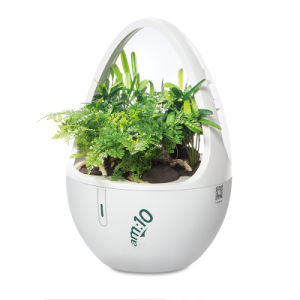 Indoor Garden with Soiless Cultivation Plant-Based Aroma Diffuser with Plasma pictures & photos