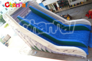 New Arrival Inflatable Giant Slide pictures & photos