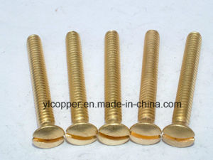 Brass Cold-Forming Screw Fittings pictures & photos